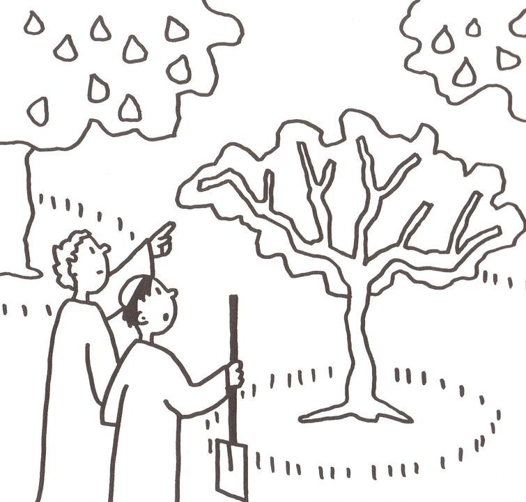 Coloring Page Fig Tree. 3 the parable of budding fig tree A Par bola da Figueira biblekids